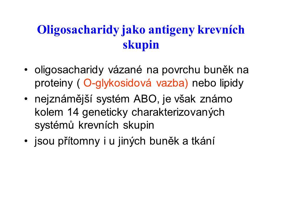 Oligosacharidy jako antigeny krevních skupin