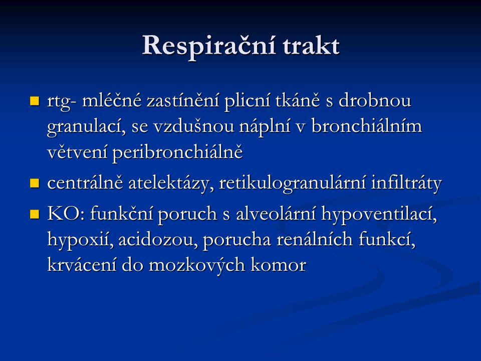 Respirační trakt rtg- mléčné zastínění plicní tkáně s drobnou granulací, se vzdušnou náplní v bronchiálním větvení peribronchiálně.