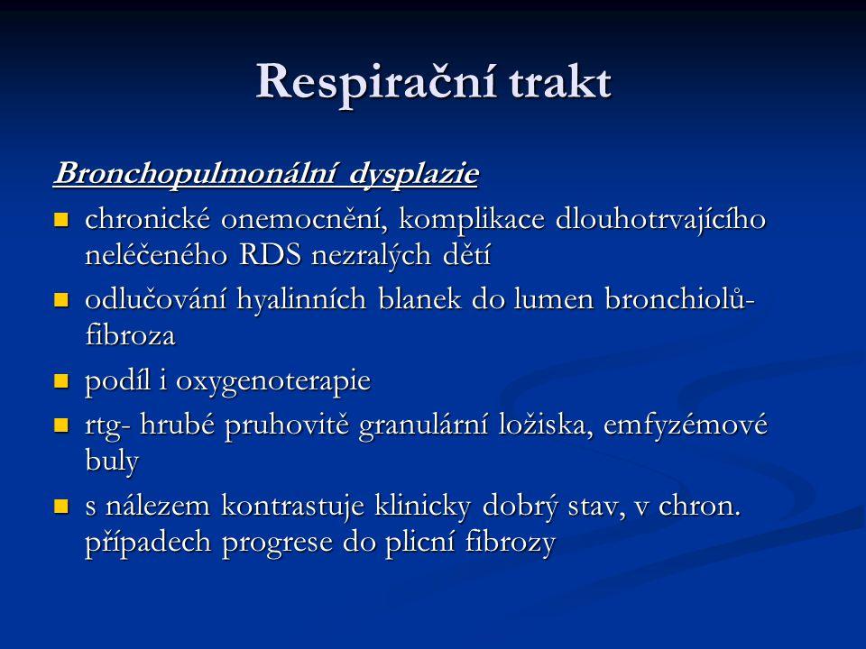Respirační trakt Bronchopulmonální dysplazie