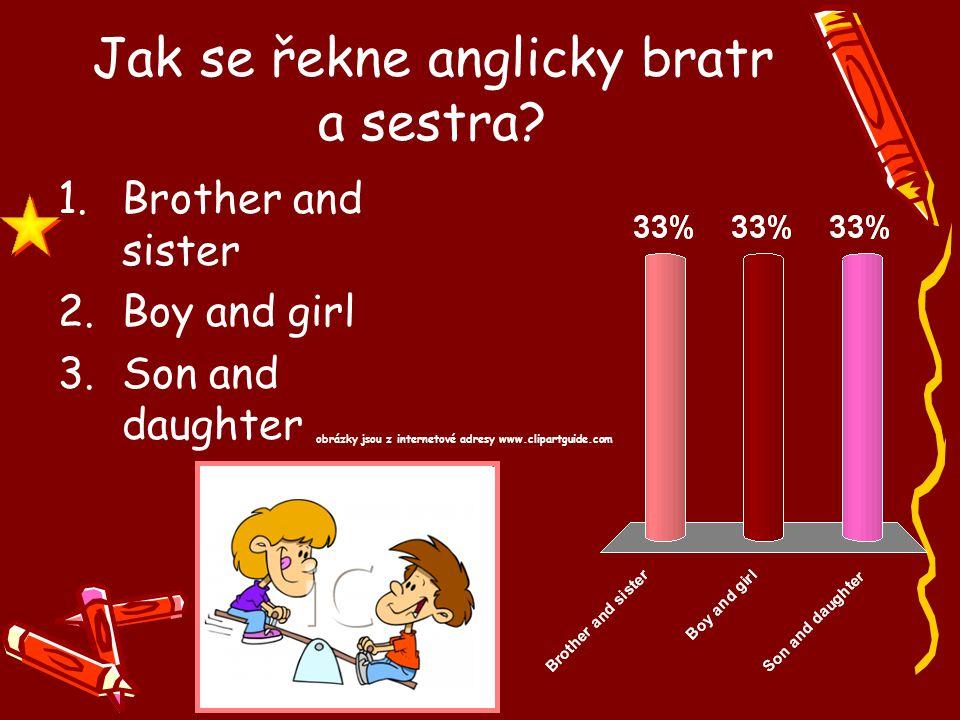 Jak se řekne anglicky bratr a sestra