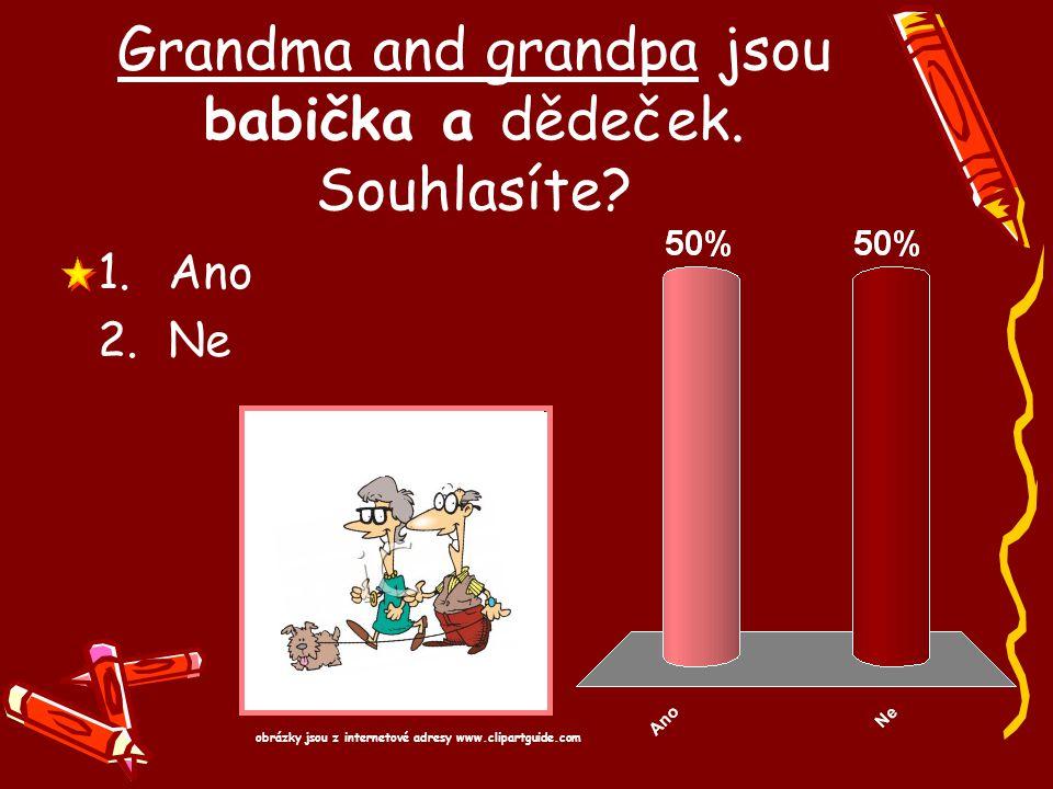Grandma and grandpa jsou babička a dědeček. Souhlasíte