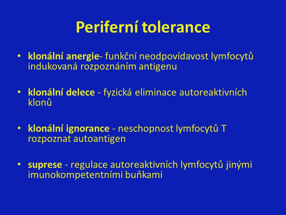 Periferní tolerance klonální anergie- funkční neodpovídavost lymfocytů indukovaná rozpoznáním antigenu.