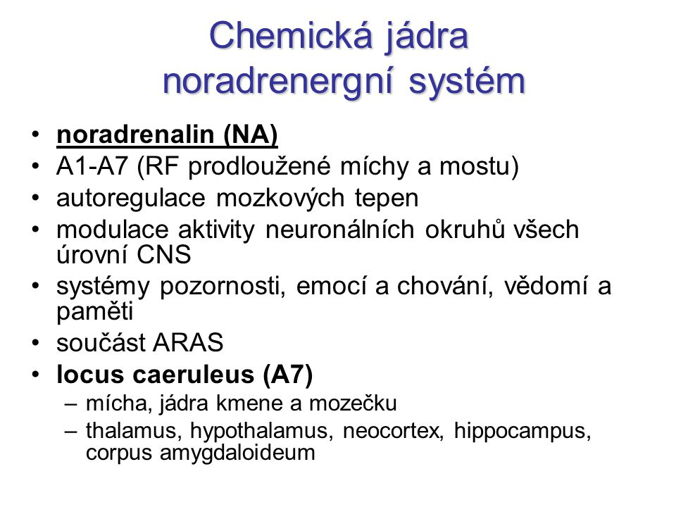 Chemická jádra noradrenergní systém