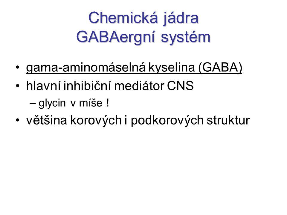 Chemická jádra GABAergní systém