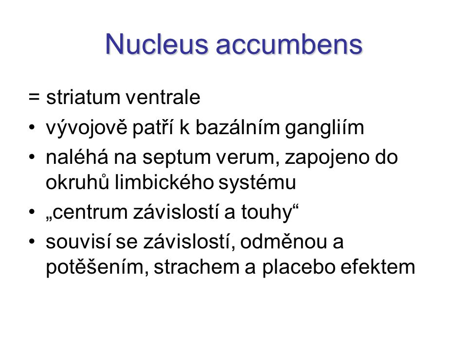Nucleus accumbens = striatum ventrale