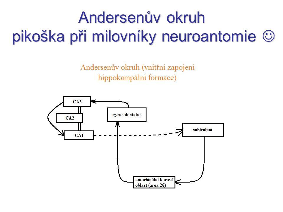 Andersenův okruh pikoška při milovníky neuroantomie 