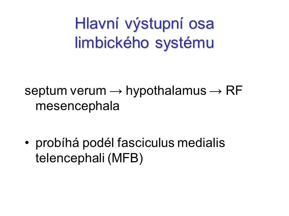Hlavní výstupní osa limbického systému