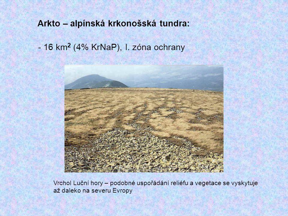 Arkto – alpínská krkonošská tundra:
