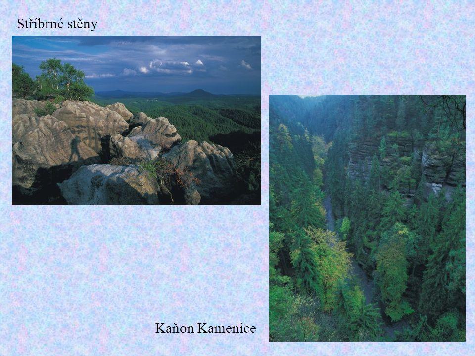 Stříbrné stěny Kaňon Kamenice
