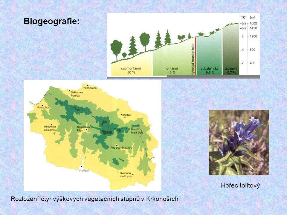 Biogeografie: Hořec tolitový