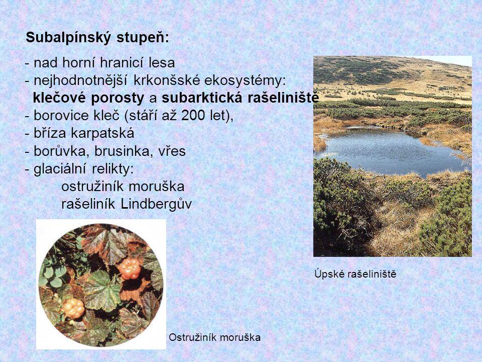 nejhodnotnější krkonšské ekosystémy: