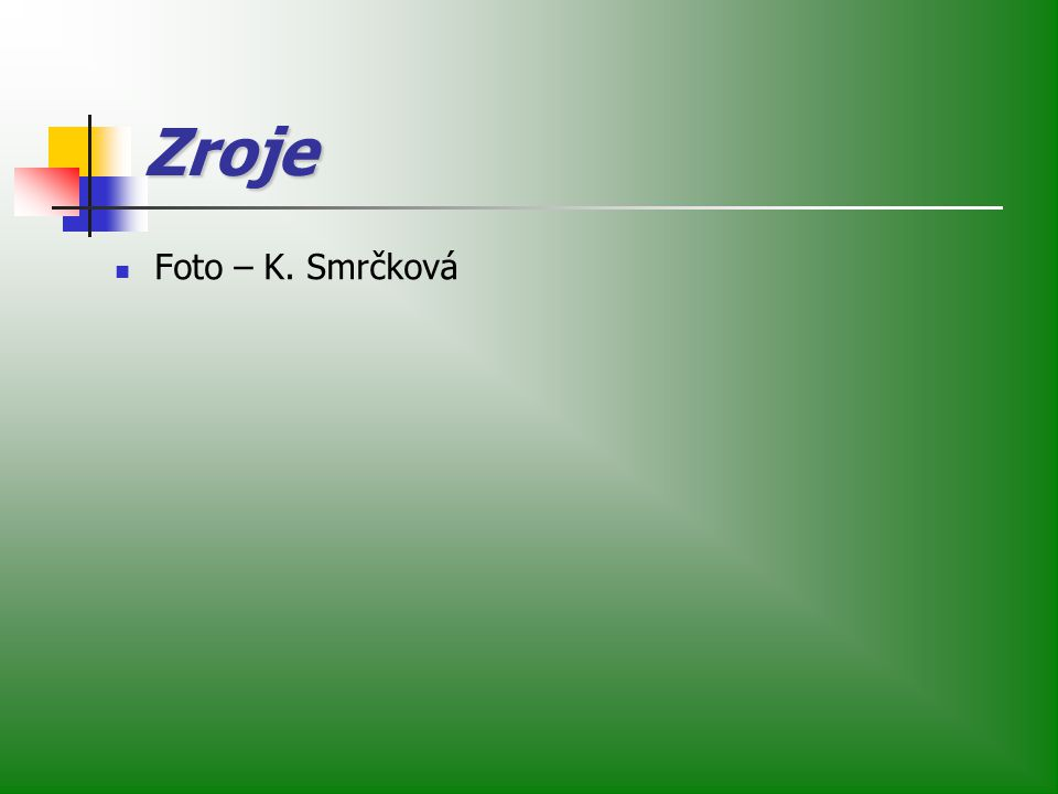 Zroje Foto – K. Smrčková