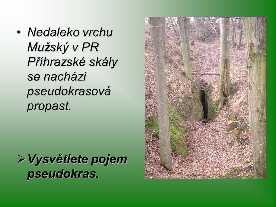 Nedaleko vrchu Mužský v PR Příhrazské skály se nachází pseudokrasová propast.