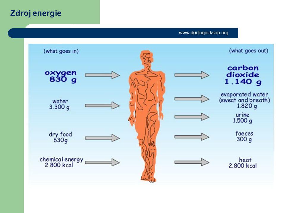Zdroj energie www.doctorjackson.org