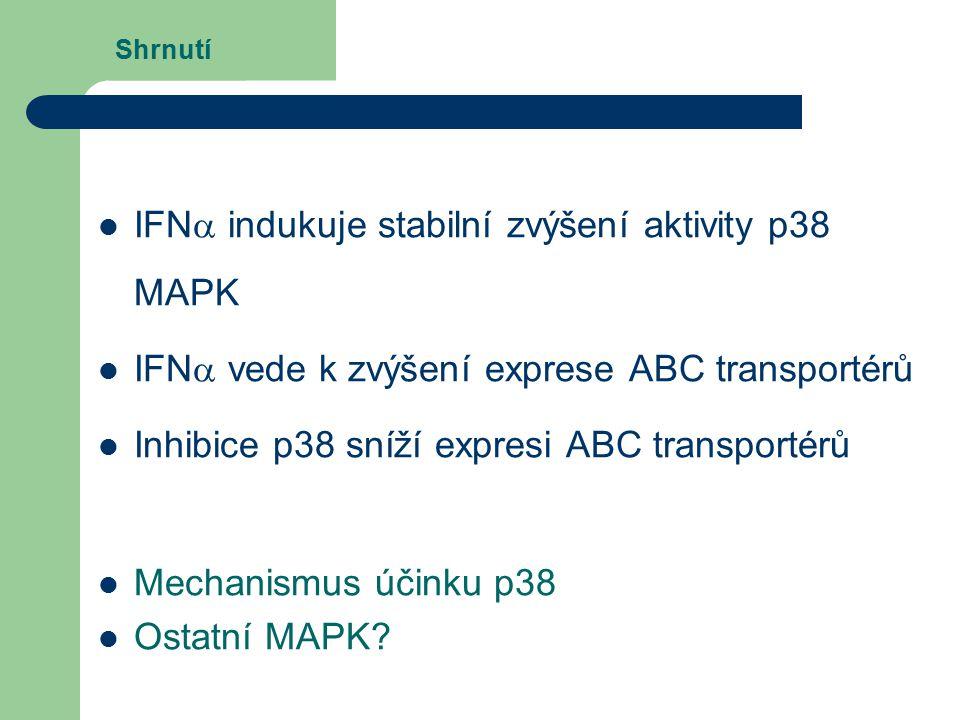 IFNa indukuje stabilní zvýšení aktivity p38 MAPK