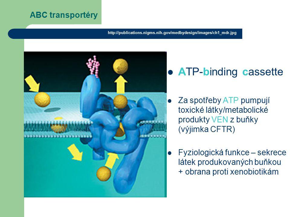 ATP-binding cassette ABC transportéry