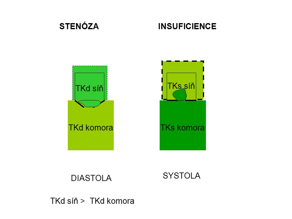STENÓZA INSUFICIENCE TKs síň TKd síň TKd komora TKs komora SYSTOLA DIASTOLA TKd síň > TKd komora