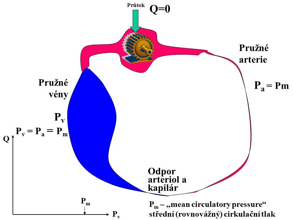 Q=0 Pa = Pm Pv Pružné arterie Pružné vény Pv = Pa = Pm Odpor
