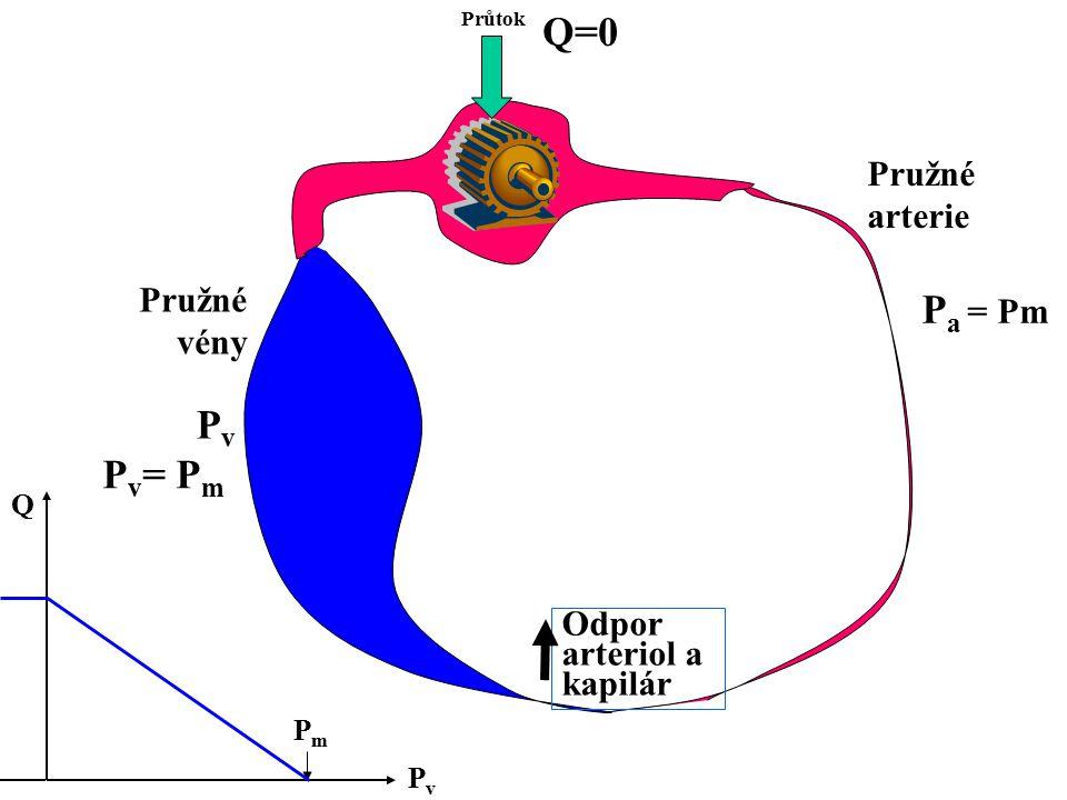 Q=0 Pa = Pm Pv Pv= Pm Pružné arterie Pružné vény Odpor