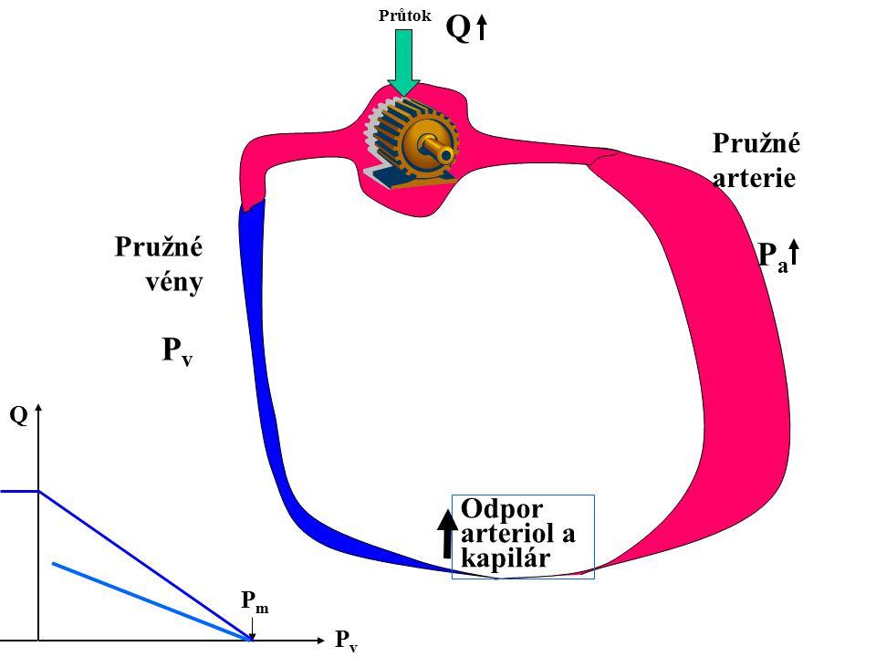 Q Pa Pv Pružné arterie Pružné vény Odpor arteriol a kapilár Q Pm Pv