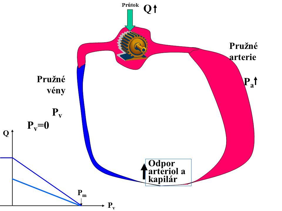 Q Pa Pv Pv=0 Pružné arterie Pružné vény Odpor arteriol a kapilár Q Pm