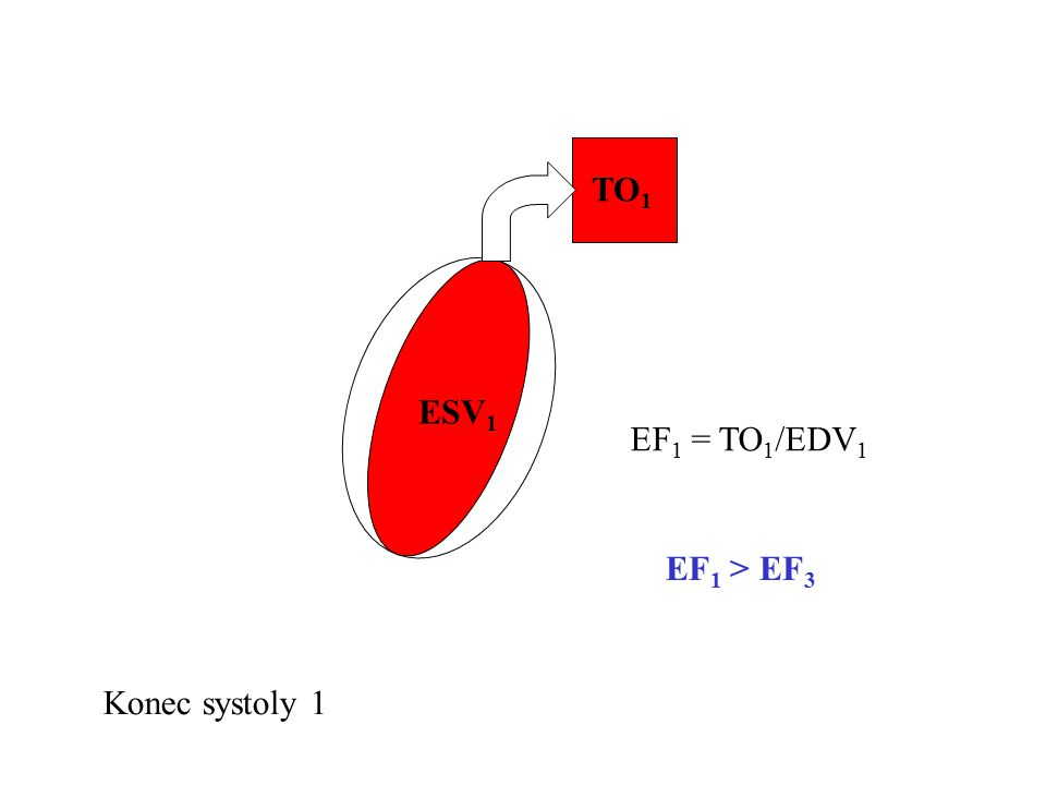 TO1 ESV1 EF1 = TO1/EDV1 EF1 > EF3 Konec systoly 1