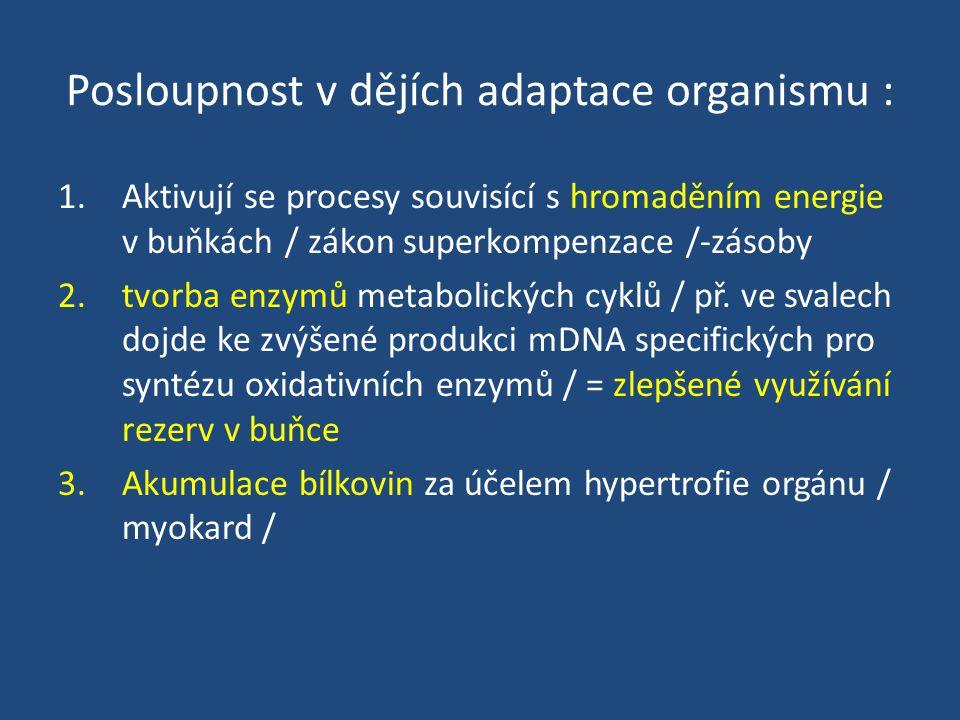 Posloupnost v dějích adaptace organismu :
