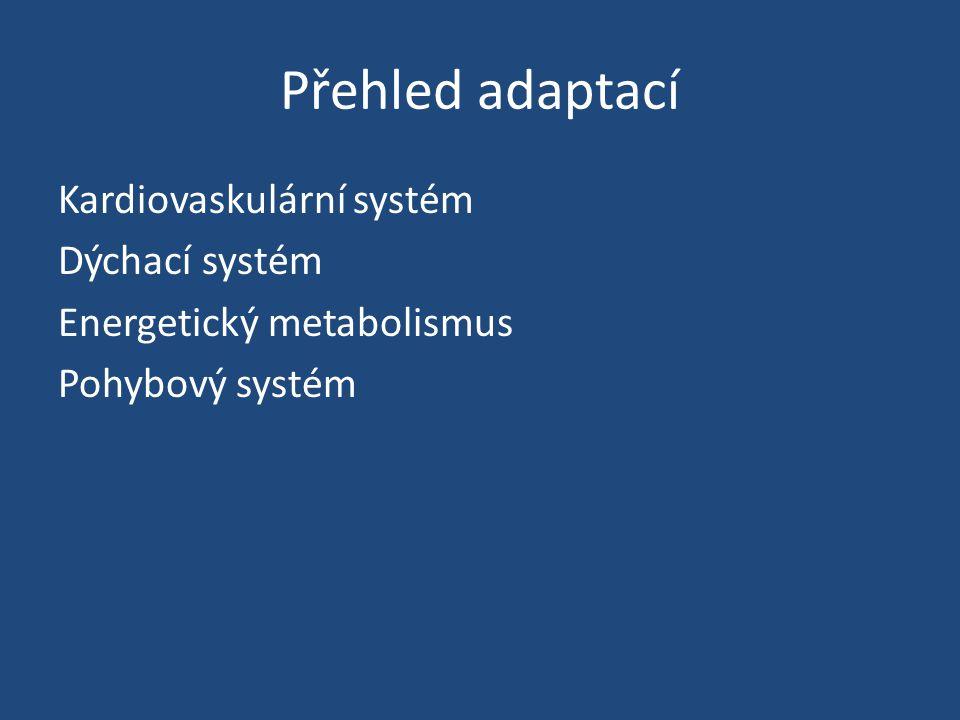 Přehled adaptací Kardiovaskulární systém Dýchací systém Energetický metabolismus Pohybový systém