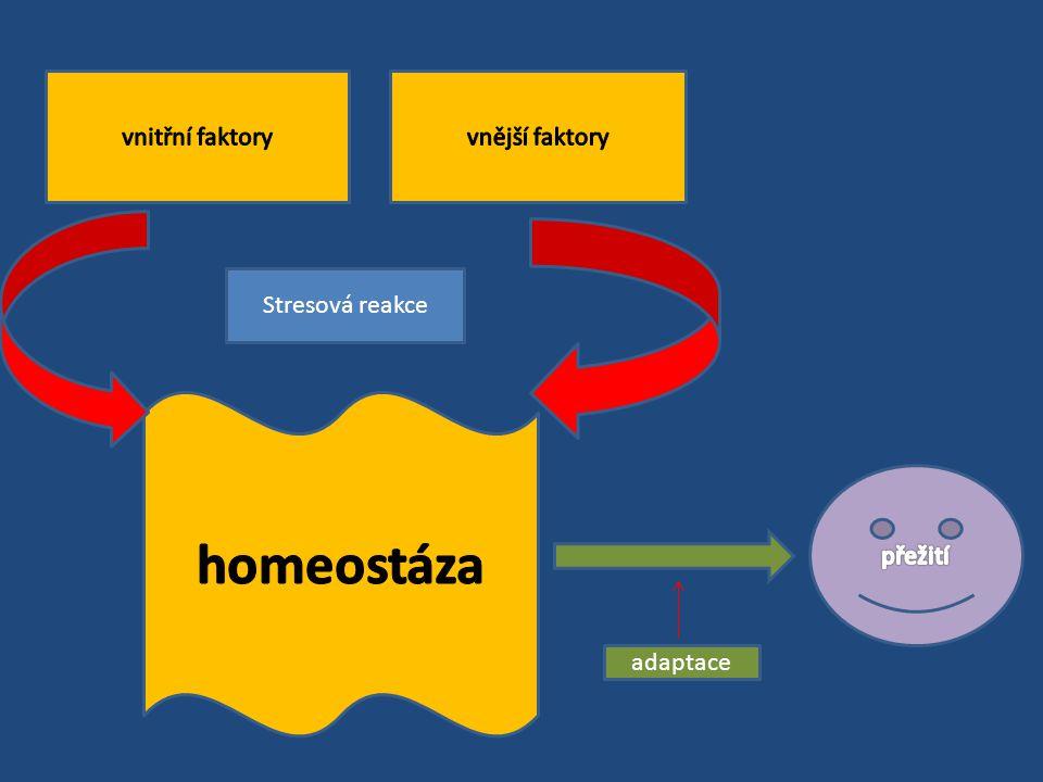 homeostáza vnitřní faktory vnější faktory Stresová reakce přežití
