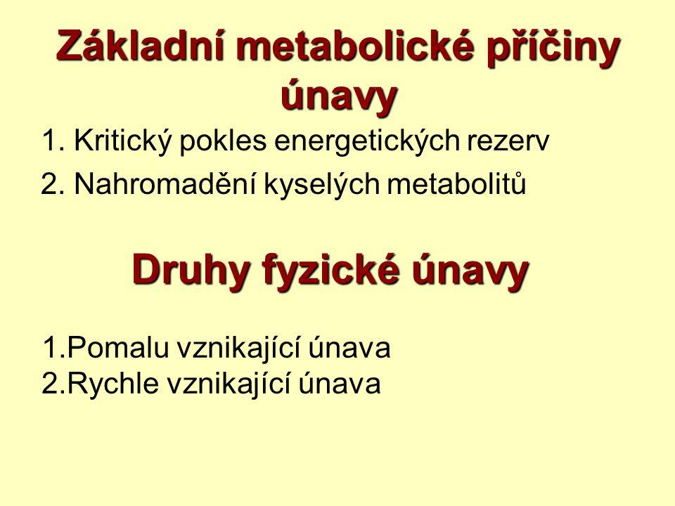 Základní metabolické příčiny únavy