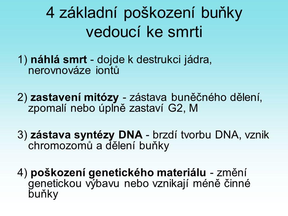 4 základní poškození buňky vedoucí ke smrti