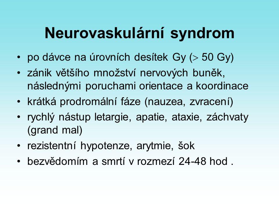 Neurovaskulární syndrom