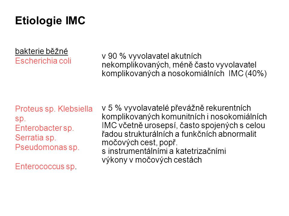 Etiologie IMC bakterie běžné Escherichia coli