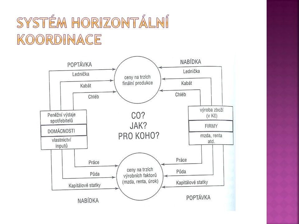 Systém horizontální koordinace