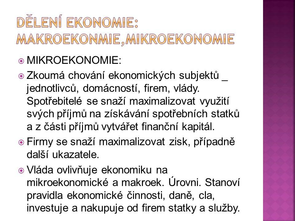 Dělení ekonomie: makroekonmie,mikroekonomie
