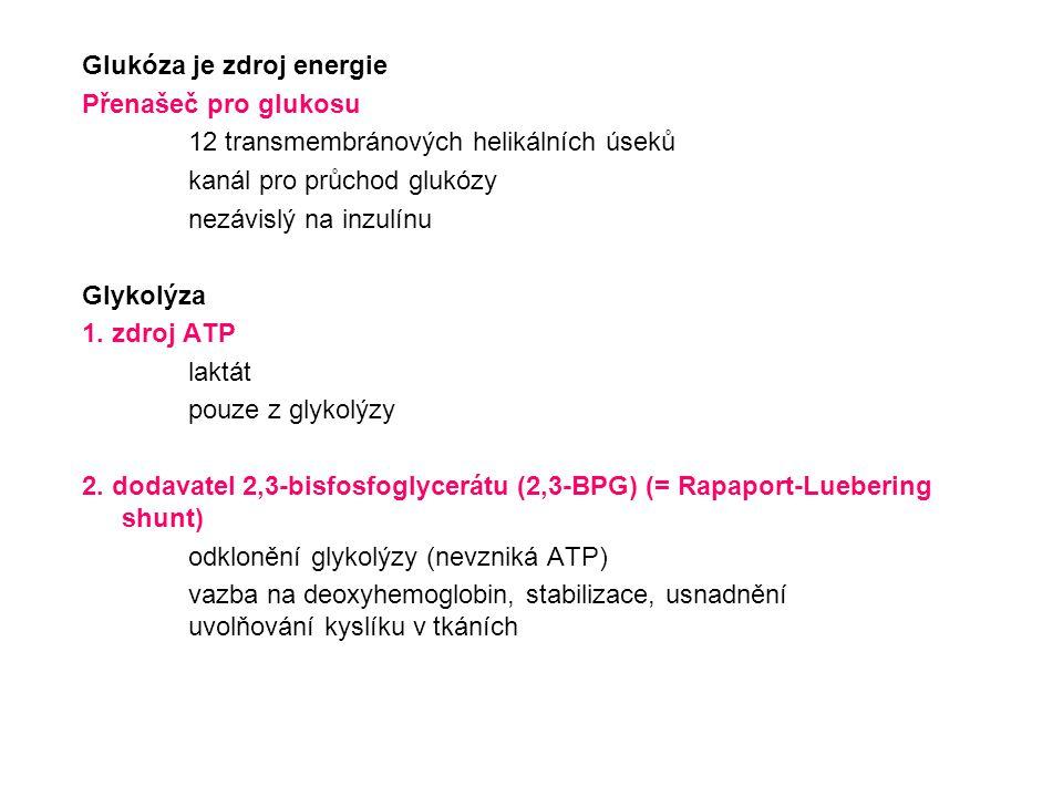 Glukóza je zdroj energie