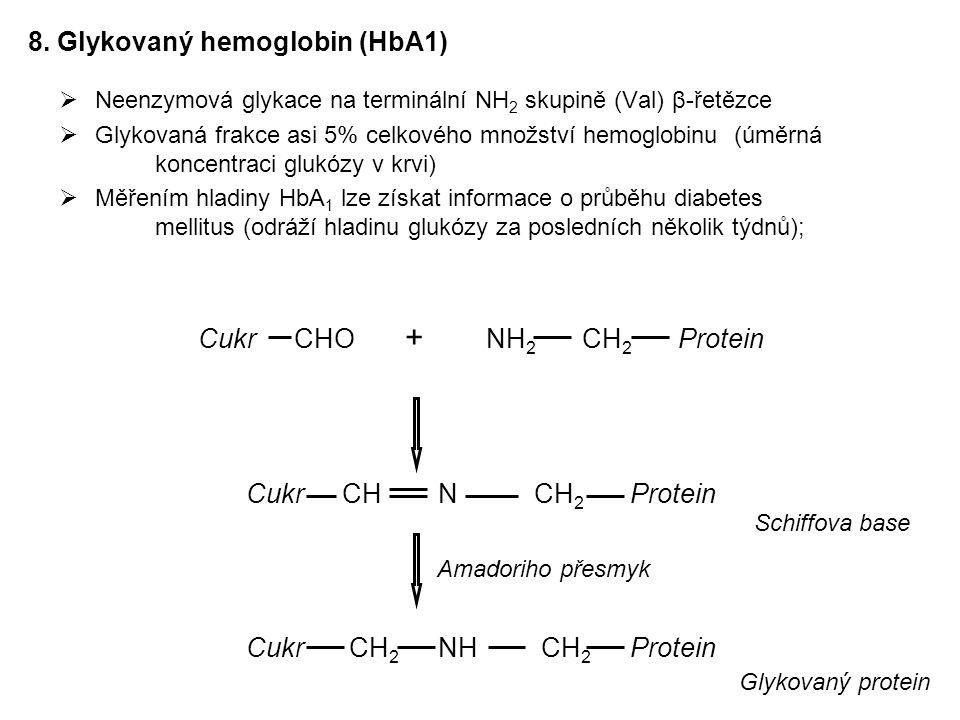 8. Glykovaný hemoglobin (HbA1)