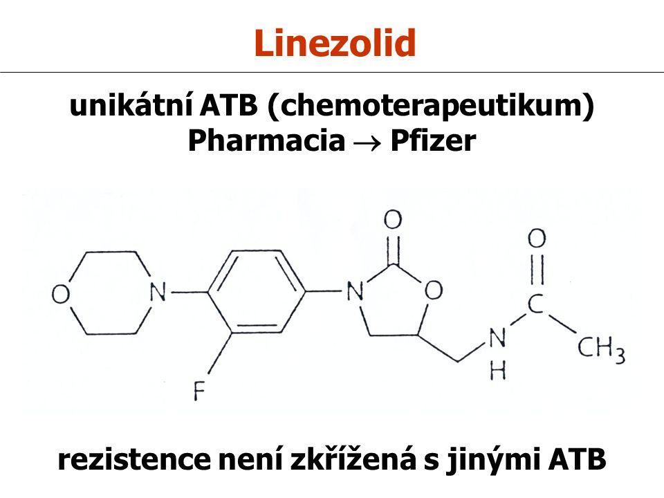 unikátní ATB (chemoterapeutikum) rezistence není zkřížená s jinými ATB
