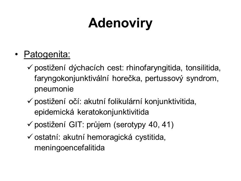 Adenoviry Patogenita: