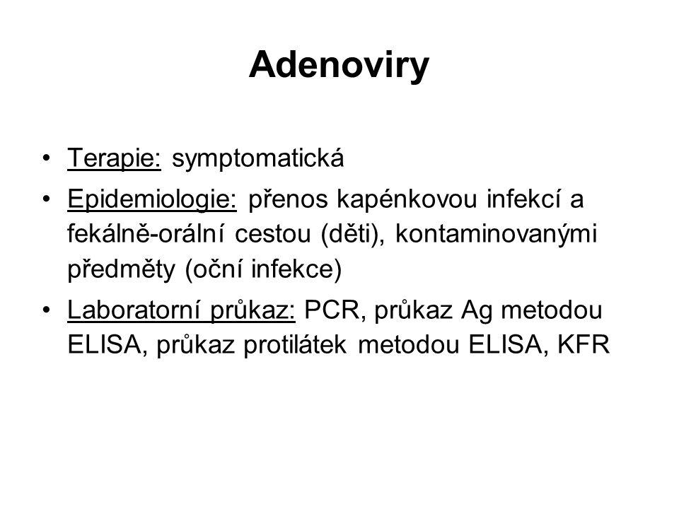 Adenoviry Terapie: symptomatická