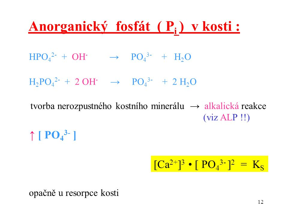 Anorganický fosfát ( Pi ) v kosti :