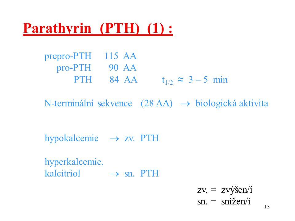 Parathyrin (PTH) (1) : prepro-PTH 115 AA pro-PTH 90 AA