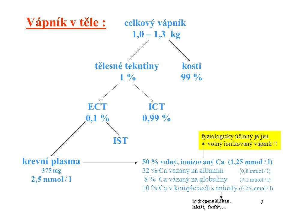 Vápník v těle : celkový vápník 1,0 – 1,3 kg tělesné tekutiny 1 % kosti