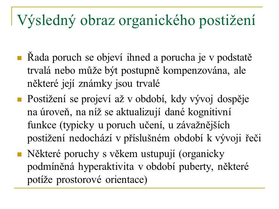 Výsledný obraz organického postižení