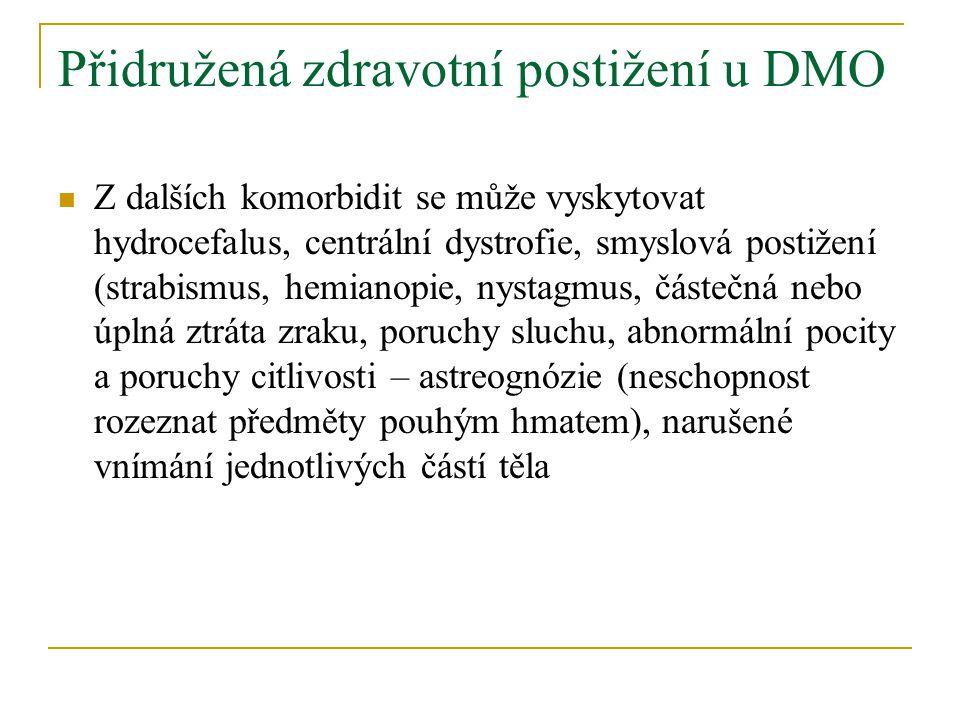 Přidružená zdravotní postižení u DMO