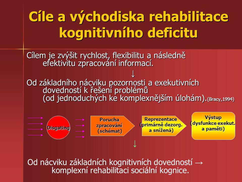 Cíle a východiska rehabilitace kognitivního deficitu