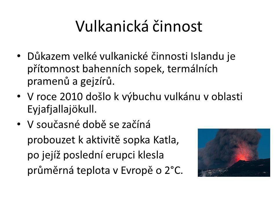 Vulkanická činnost Důkazem velké vulkanické činnosti Islandu je přítomnost bahenních sopek, termálních pramenů a gejzírů.