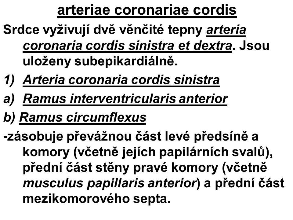 arteriae coronariae cordis