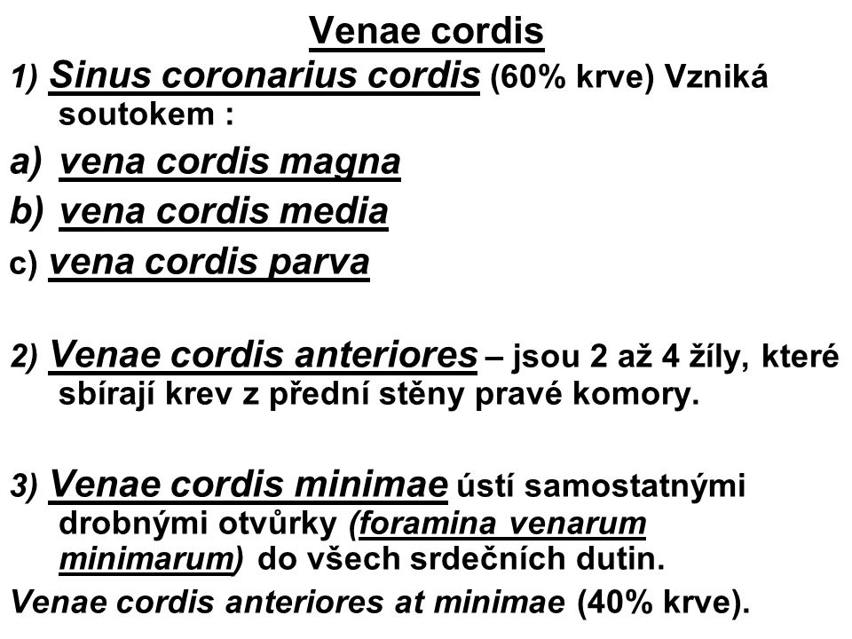 Venae cordis vena cordis magna vena cordis media