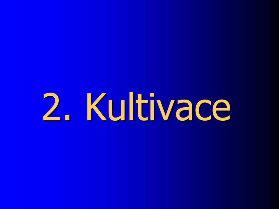 2. Kultivace